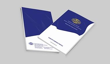 Thiết kế hồ sơ năng lực Vinaconex