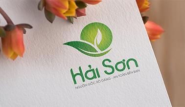 Thiết kế logo thương hiệu Hải Sơn