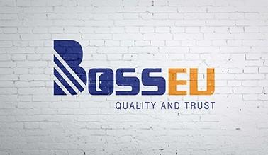 Dự án thiết kế logo BOSSEU